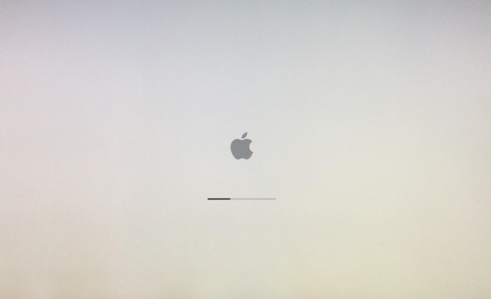 iMac white screen of death